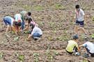 重庆首个农村小学科普园正式开园