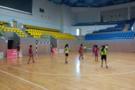 苏州阳光体育联赛中小学手球比赛举行
