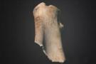 全球第一块3D打印甲骨文在英国剑桥大学展出