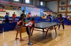 2019年呼倫貝爾市青少年乒乓球錦標賽成功舉辦