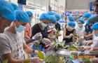 四川文理学院留学生包粽子体验端午习俗