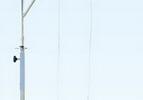 簡易滑輪吊環訓練器材 上肢康復訓練器材  產品貨號: wi113869