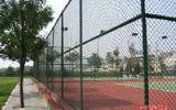 供应体育场围栏网