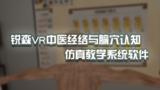 锐森VR中医经络与腧穴认知仿真教学系统软件 中医VR/中医仿真软件/经络仿真/穴位仿真/VR经络