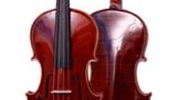 东莞小提琴培训 东莞小提琴教学培训中心