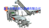 葡萄整粒发酵工艺设备--振动粒选生产线设备-领先轻工