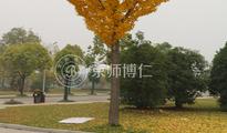 京师博仁助力中国矿业大学心理咨询室建设
