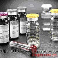 人β2-微球蛋白(β2-MG)ELISA试剂盒