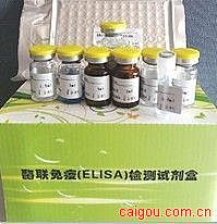 人内脏脂肪特异性丝氨酸蛋白酶抑制剂(vaspin)ELISA Kit