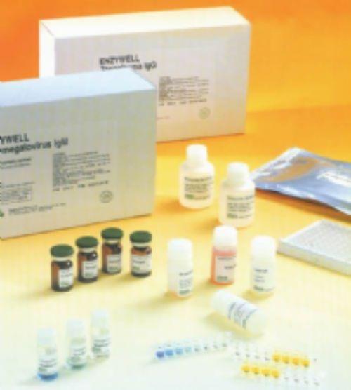 人骨成型蛋白4ELISA试剂盒