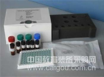 兔β淀粉样蛋白1-40(Aβ1-40)ELISA Kit