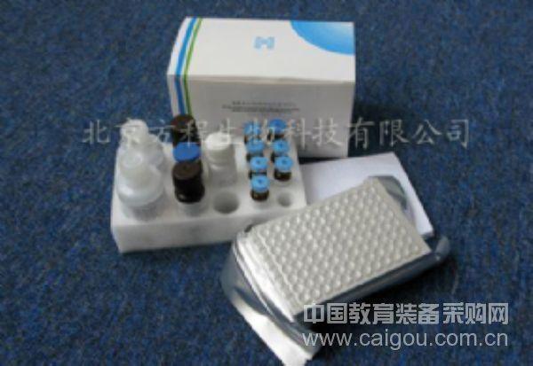 ELISA试剂盒现货供应小鼠IL-10 ELISA Kit检测价格