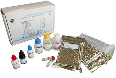 大鼠细胞间粘附分子2(ICAM-2/CD102)ELISA试剂盒