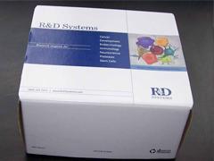 人性激素结合球蛋白(SHBG)ELISA试剂盒