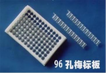 丹麦NUNC 原装384孔PCR板