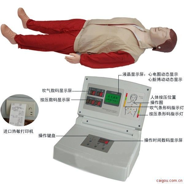 心肺復蘇模擬人,急救訓練模型,電力急救訓練模擬人,礦山救護培訓模擬人,電力安全訓練模擬人