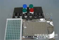 小鼠丙酮酸激酶M2型同工酶(M2-PK)ELISA试剂盒