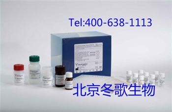 Human尿激酶型纤溶酶原激活物受体,人(PLAUR/uPAR)elisa试剂盒